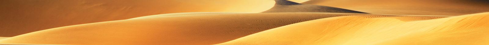 desertflip