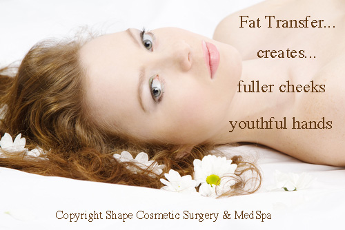 Fat Transfer Surgery Spokane and Tri Cities, WA